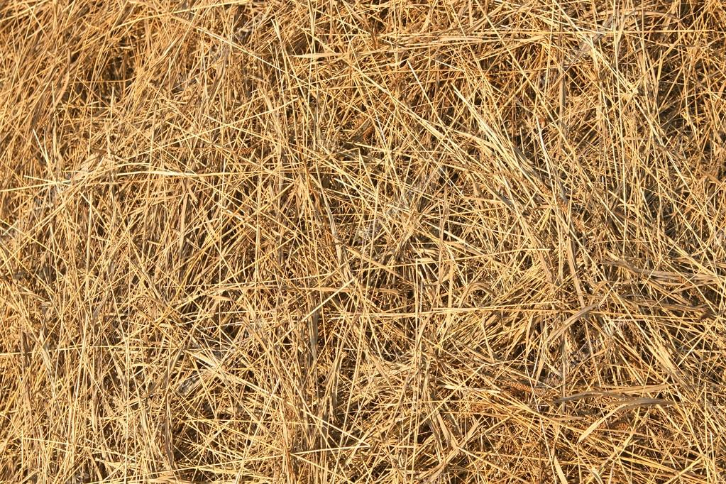 Texture of dry hay