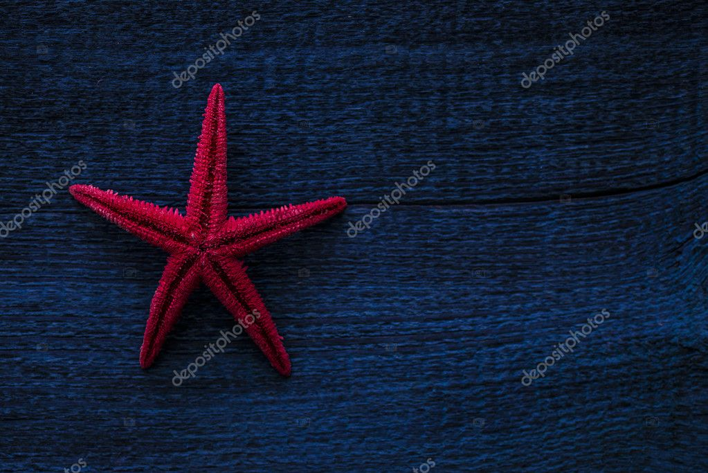 red starfish on wooden planks