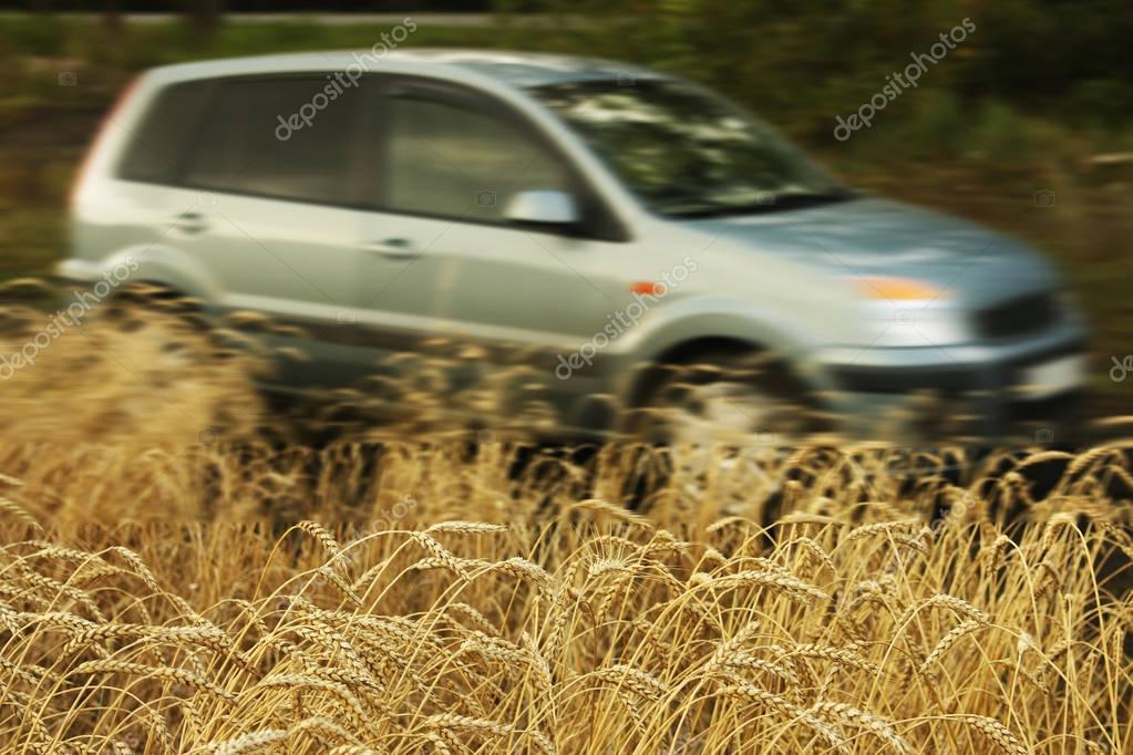 Car Parking On Wheat Field.