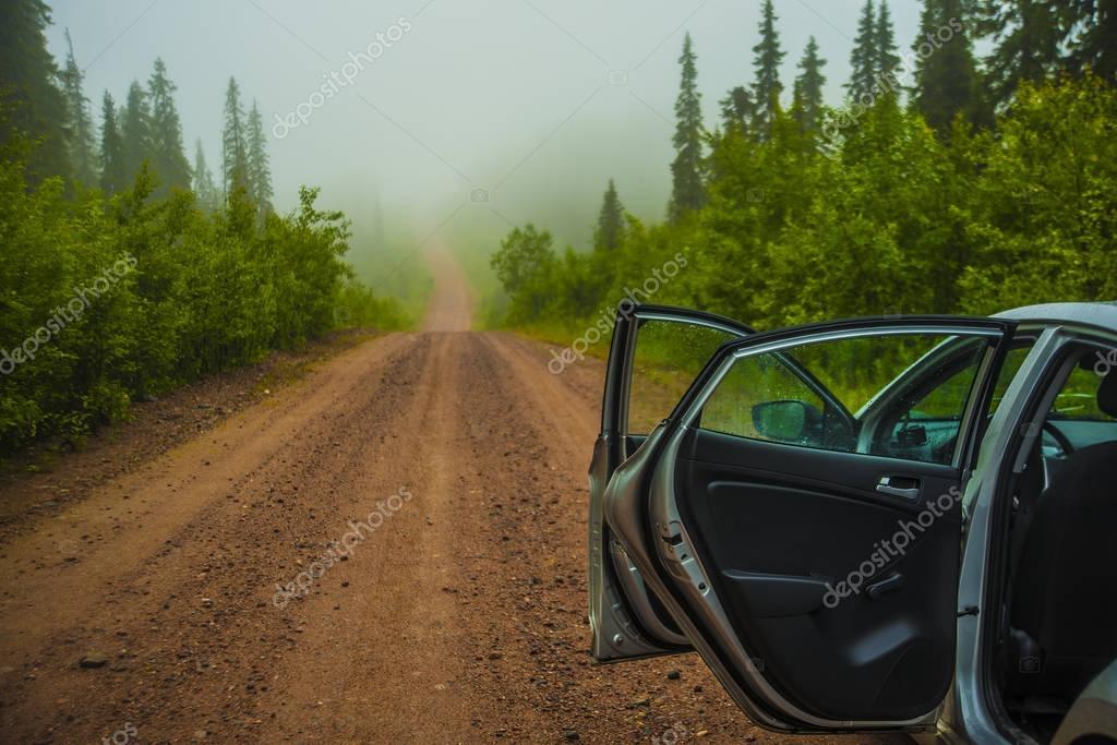metalic car with open door