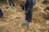 Fotografie Kinder, die Einpflanzung in der Obstanlage