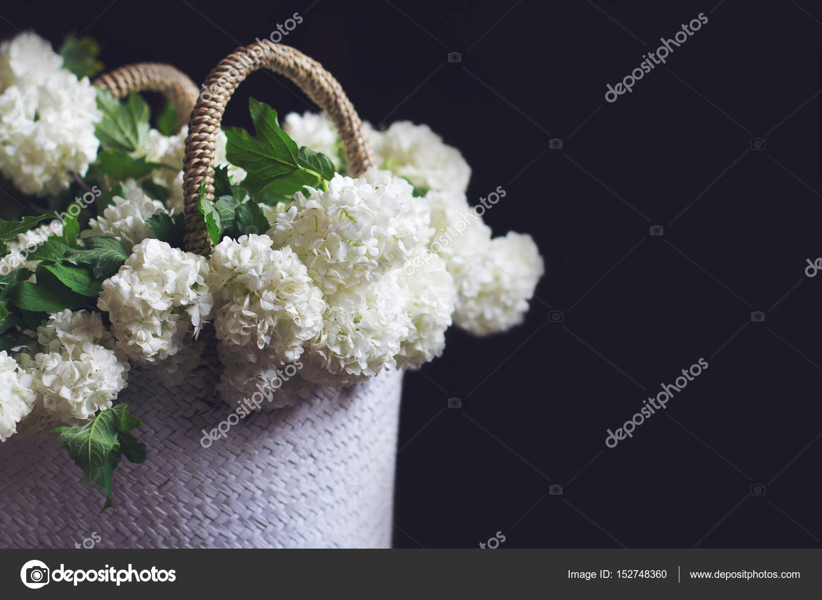 Side View Of White Flowers In A Wicker Bag Stock Photo Macondos