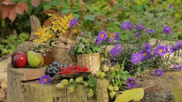 Podzimní zátiší ovoce a květiny