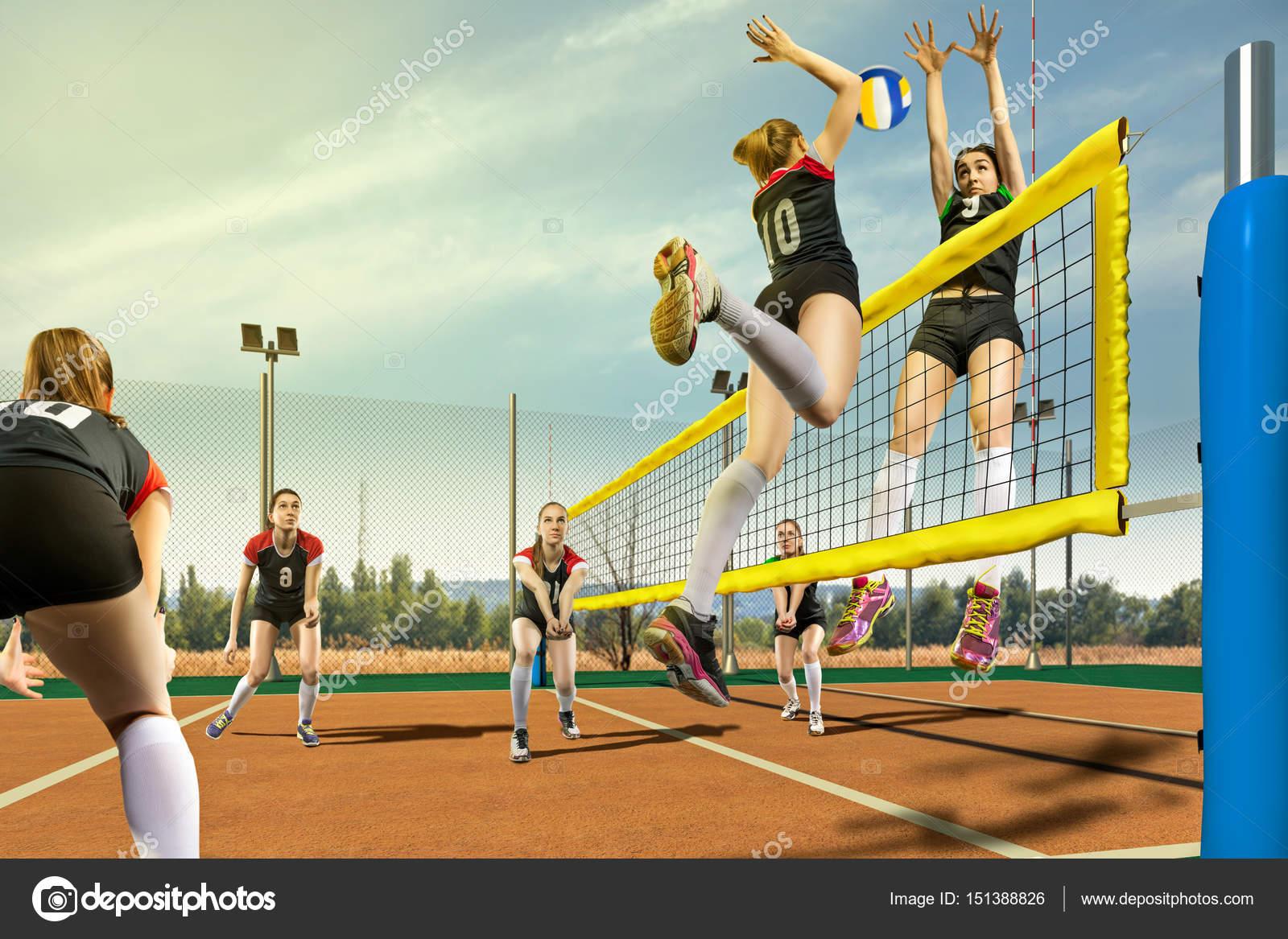Voleibol ao vivo