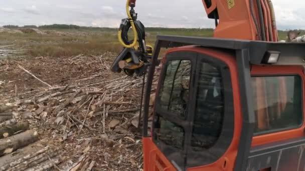 Luftaufnahme eines Erntehelfers, der einen Baumstamm auf einem Feld in der Nähe des Waldes schneidet. Forstwirtschaft und Holzindustrie. In Schuss Harvester Maschine gefällt einen Baum hinter einer Gruppe von Kiefern. Fahrerseite