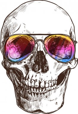 Human Skull With Sunglasses