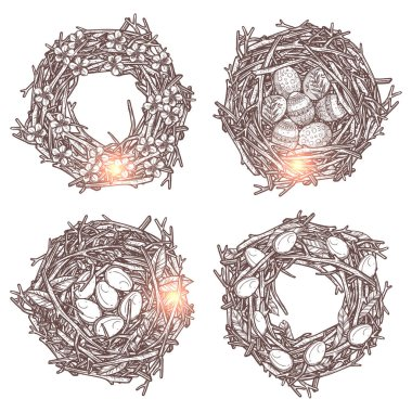 Set Of Branches Wreaths And Bird Nests