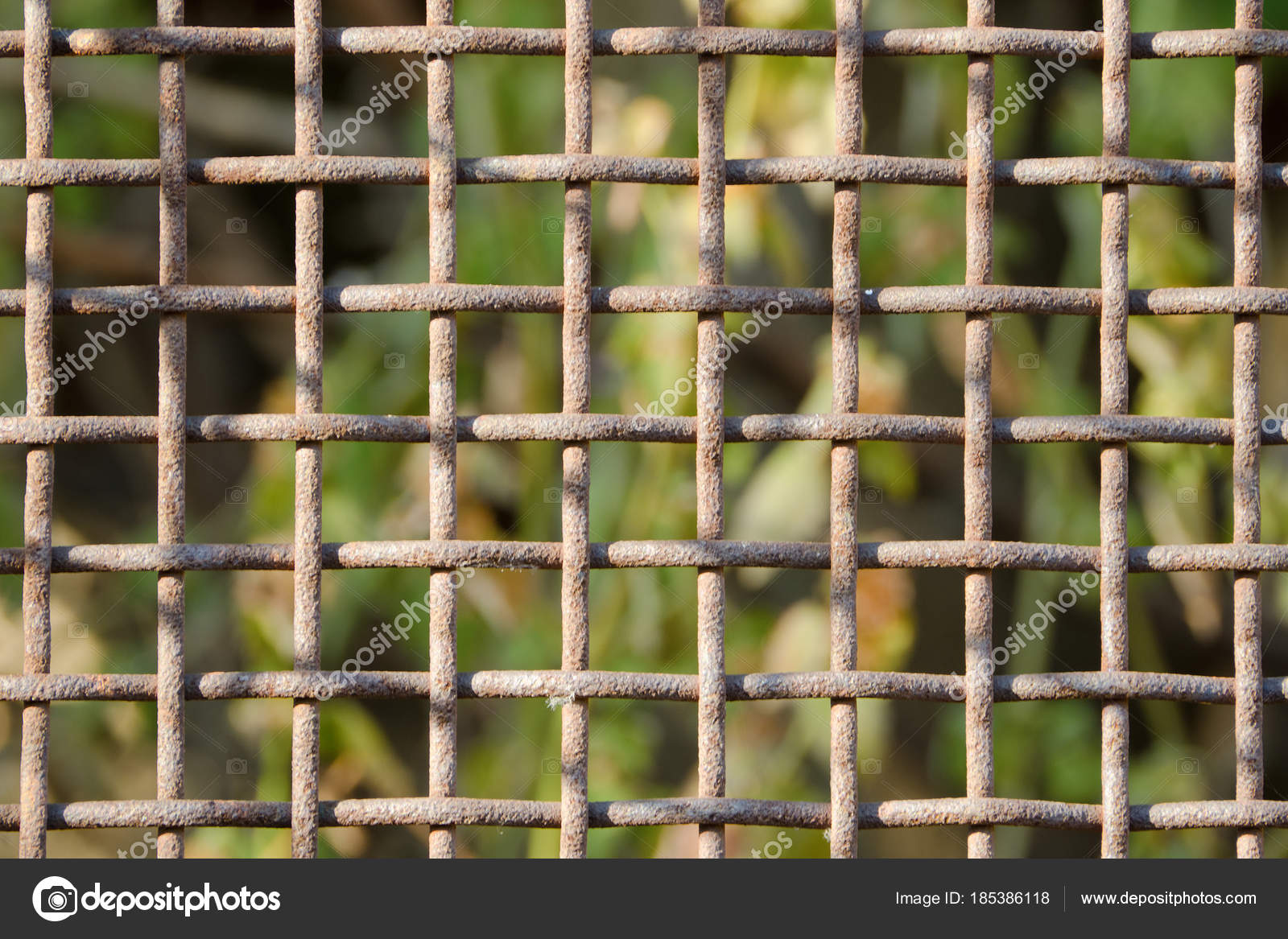 rusty cage download