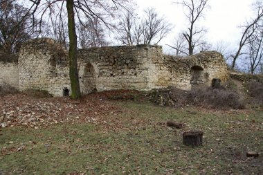 Ruins of medieval house or palace