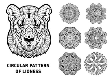 Coloring book for adults. Head of a lioness with patterns.