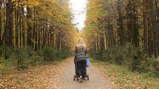 Séta az őszi erdőben fiatal anya