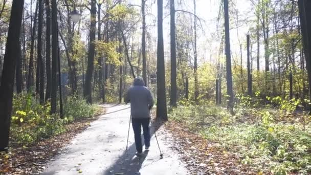 Severská chůze s holemi