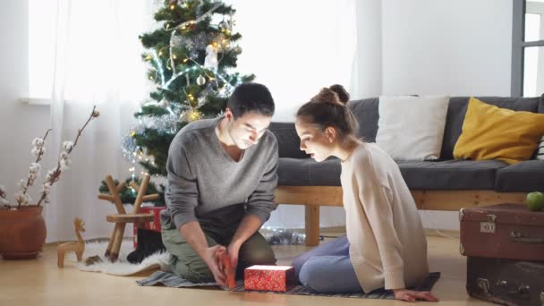 Regali Di Natale Video.Coppie Romantiche Che Lo Scambio Di Regali Di Natale Video Stock