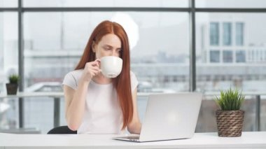 Young smiling business woman working laptop in office.