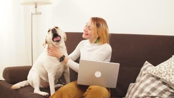 Mladá podnikatelka hraje s velkým bílým psem v bytě na gauči