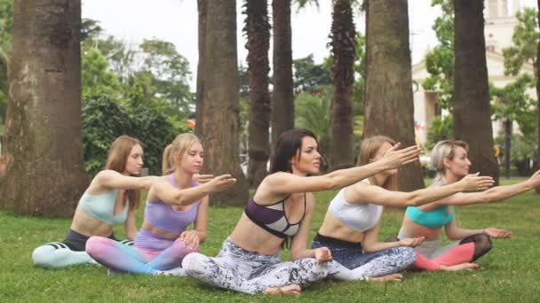 Yoga Fitness group of woman meditating outdoors over big tropical palms.