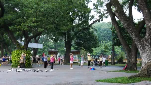 brzy ráno v parku