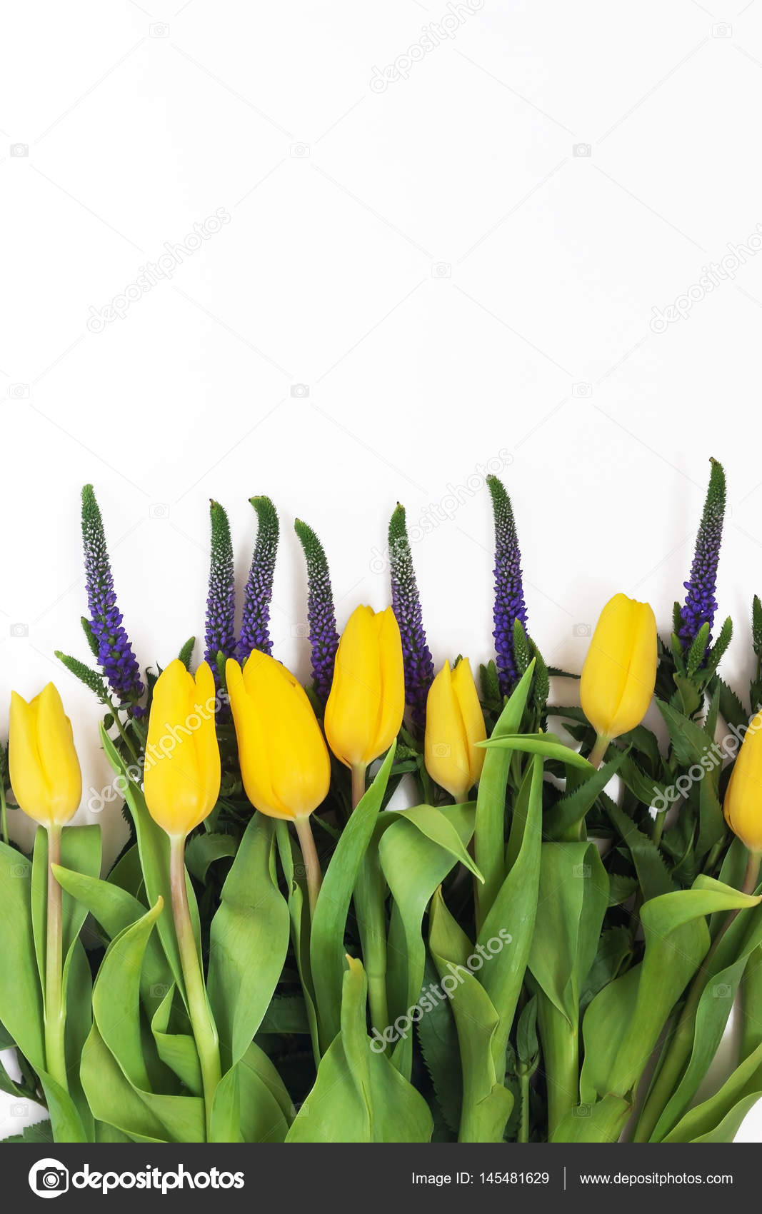 Bouquet Of Veronica Flowers And Yellow Tulips Isolated On White