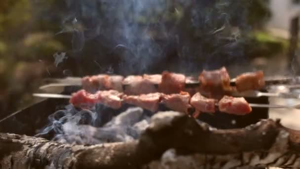 Grilování s vynikající grilované maso a brambory na grilu. Kebab gril Party. Gril na dřevěné uhlí