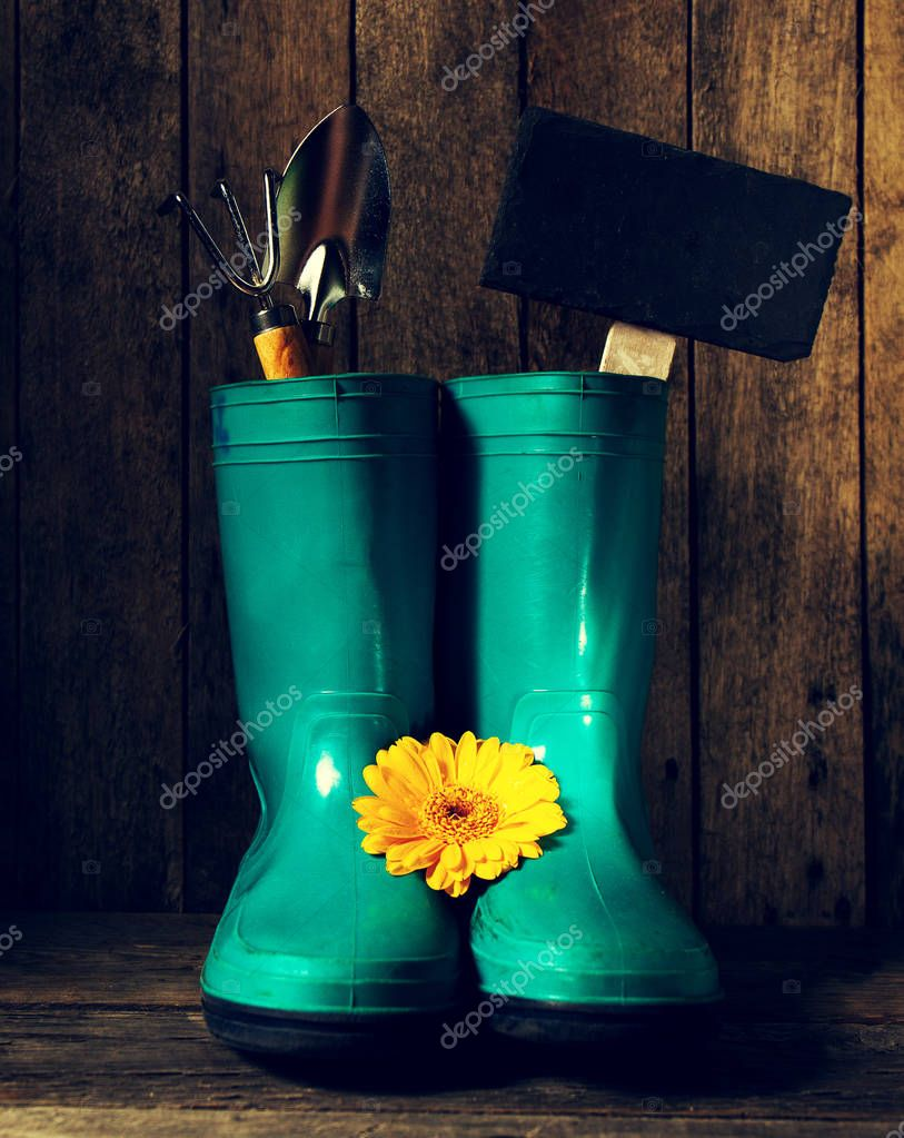Gardening tools with blue rubber boots, yellow spring flowers