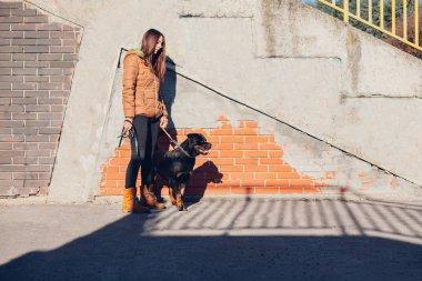 Girl and dog on a walk