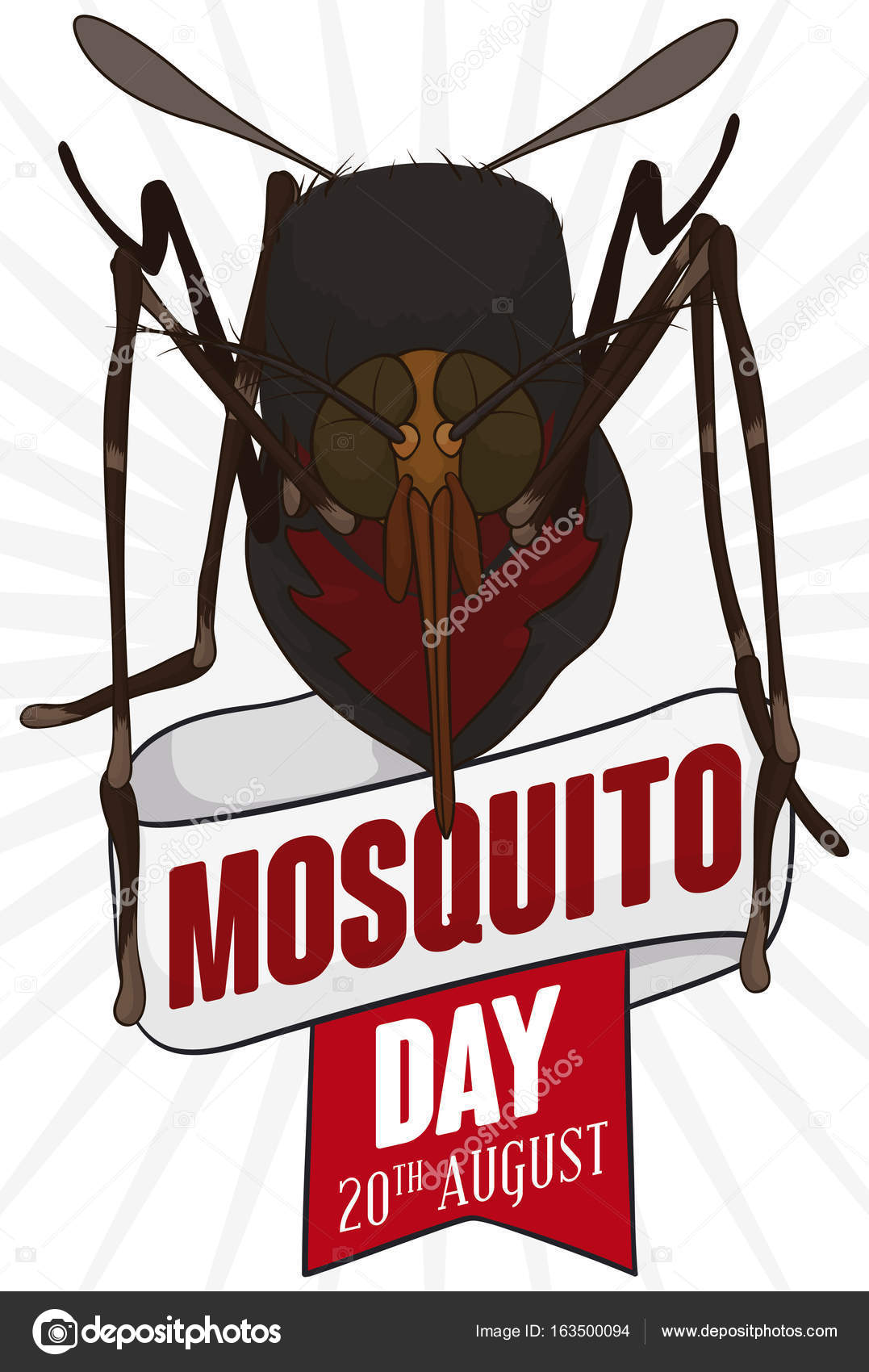 World Mosquito Day What You Need To Know About Mosquitoes Pregnancy