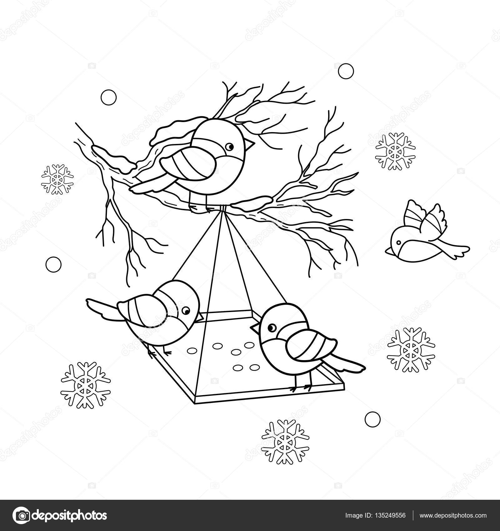 Coloring Page Outline Of Cartoon Birds In The Winter Bird Feeder Bullfinch Titmouse Sparrows Book For Kids Vector By Oleon17