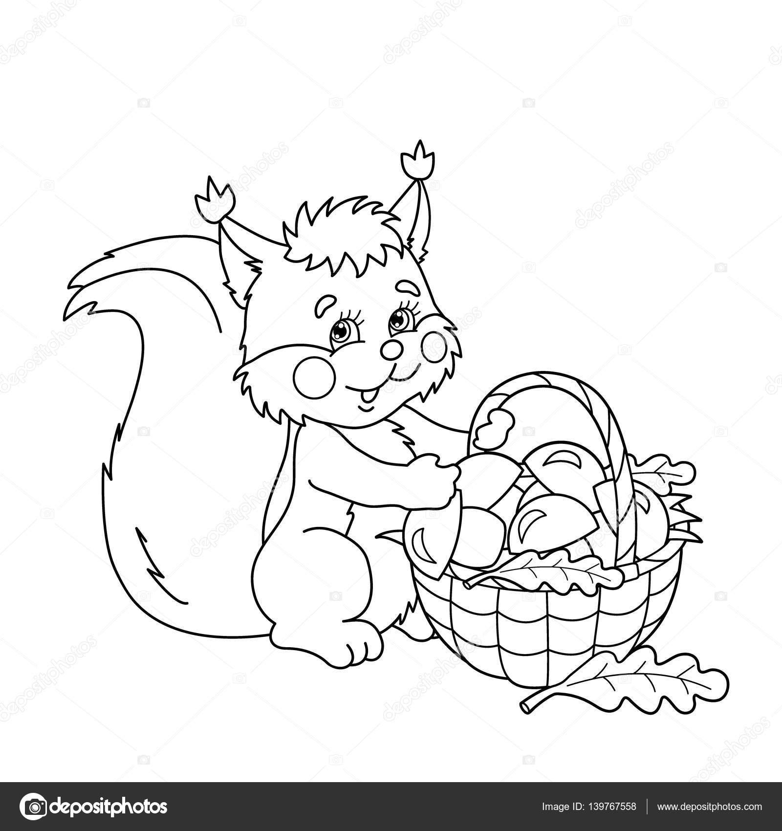 Kleurplaat Pagina Overzicht Van Cartoon Eekhoorn Met Mandje Van