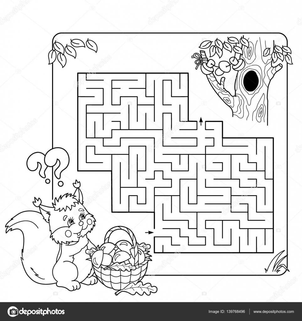 8a39f7a54 Kreslené vektorové ilustrace vzdělání bludiště nebo labyrint hra pro  předškolní děti. Hádanka. Barevné stránky osnovy z veverka s košíkem hub.