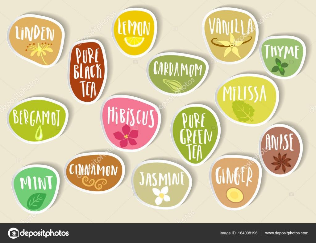 Trendige Sticker Tee Zusatzstoffe mit Schriftzug — Stockvektor ...