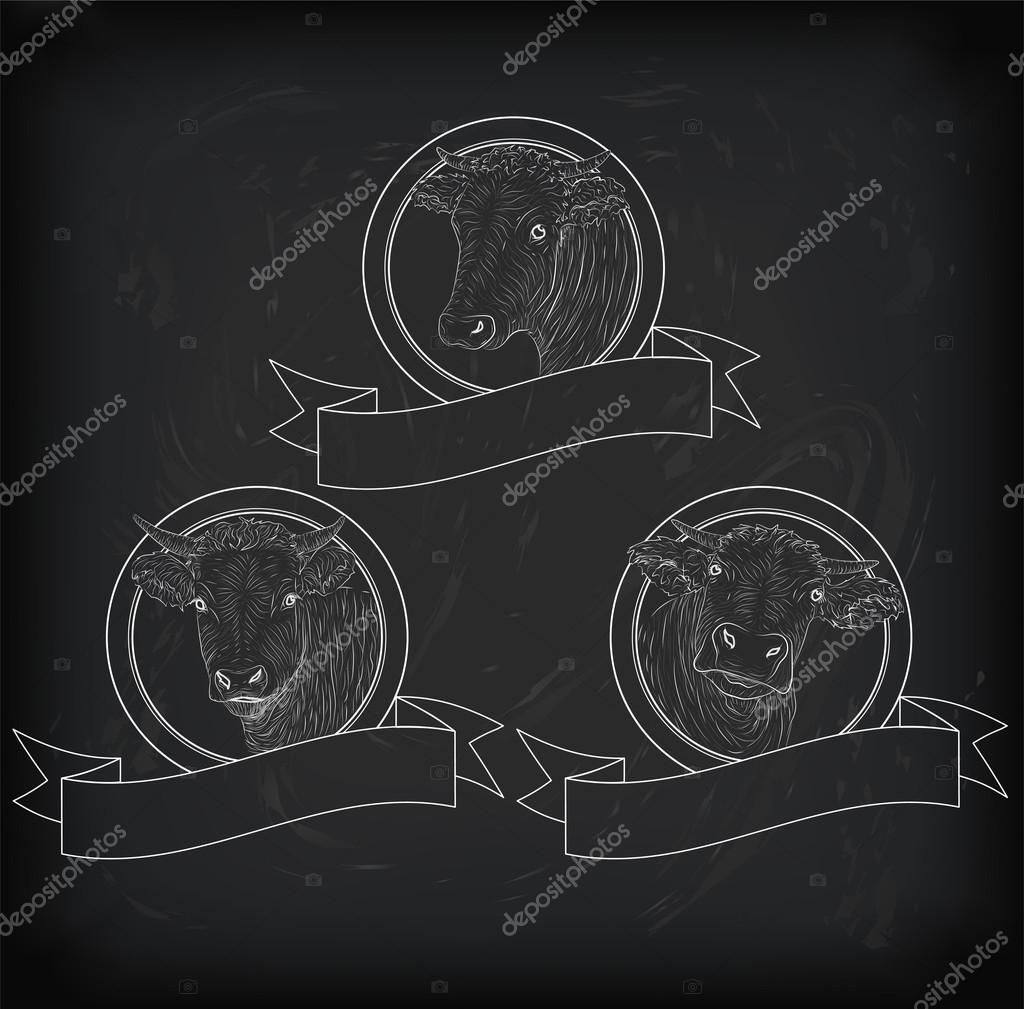 Cow calf bull cute muzzle face set collection variation sticker cow calf bull cute muzzle face set collection variation sticker icon label tag badge symbol text space tape vector beautiful square nice chalkboard sign buycottarizona
