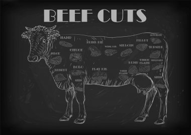 Beef cow bull whole carcass cuts cut parts infographics scheme sign signboard poster butchers guide: neck chunk, brisket fillet rump. Vector beautiful horizontal closeup white outline black background