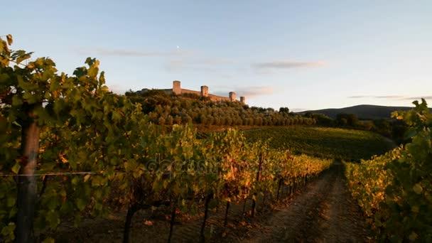 vinice a pevnosti Monteriggioni, Itálie