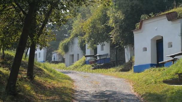 Staré vinné sklepy v Petrově, Česká republika