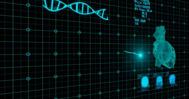 EKG Monitor. Blue ECG monitor shows healthy heart beat. Seamless loop