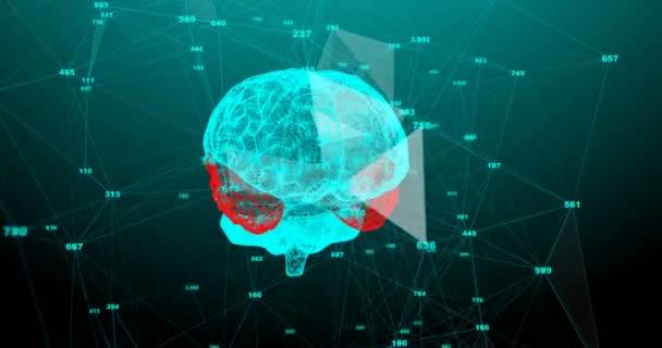 Lidský mozek. Plexus s čísly. Krásné pozadí. Koncept vědy, medicíny a obchodu. Animace smyčky