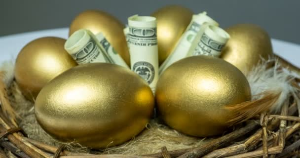 Golden eggs in a birds nest, with banknotes, concept of investment, retirement savings