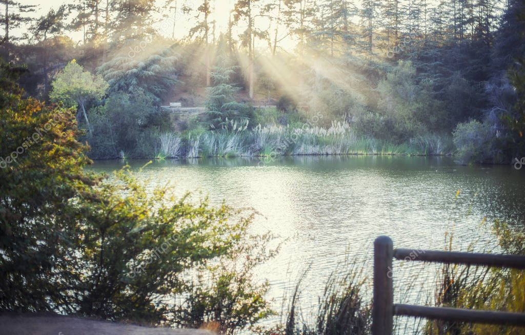 Stunning golden sun rays cover Franklin Canyon lake filled, Los ANgeles, California
