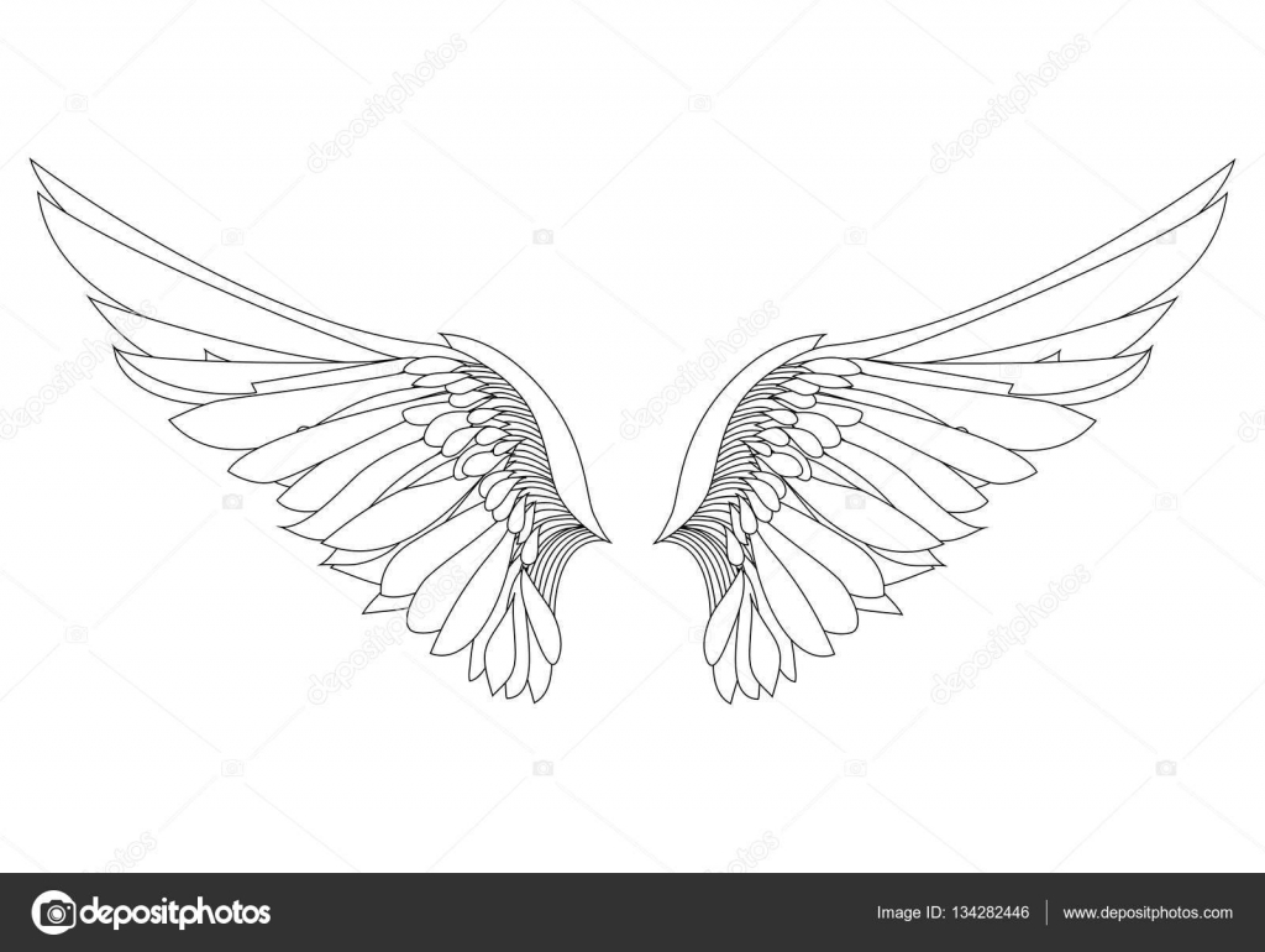 翼白の背景にベクトル イラスト黒と白 ストックベクター