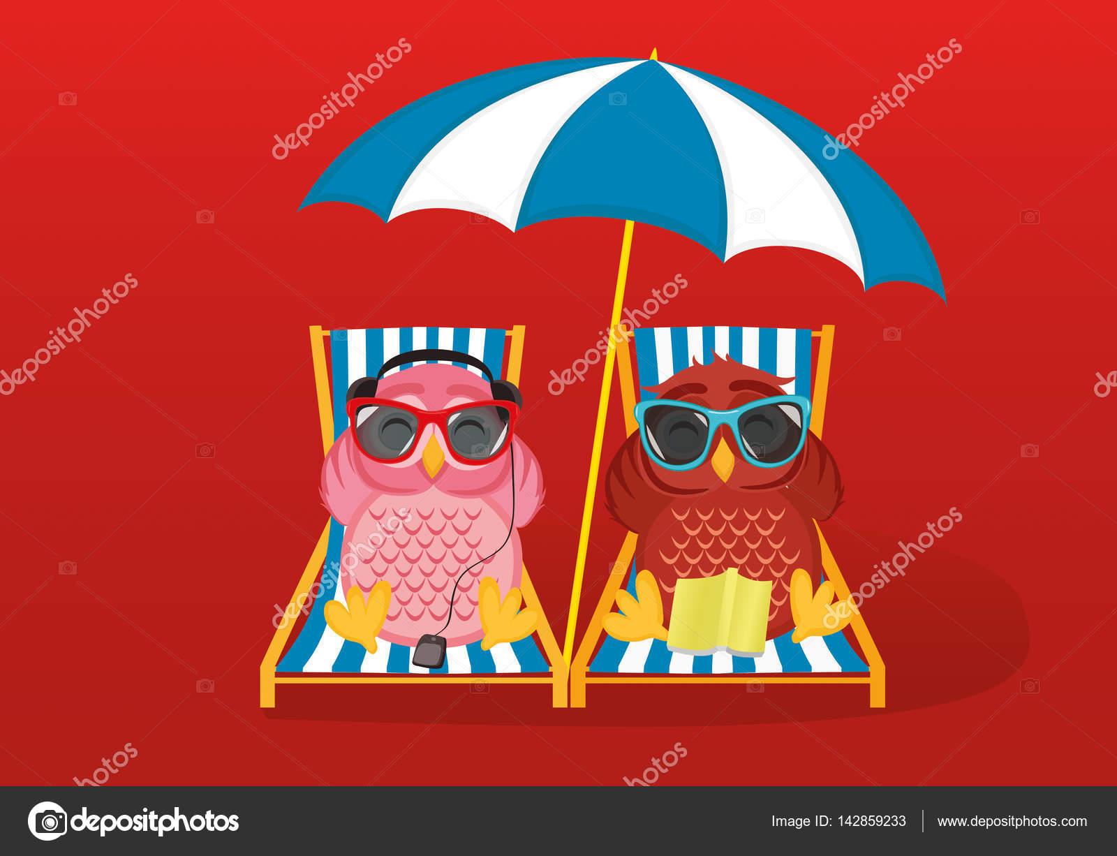 Niedliche zwei Eulen mit Sonnenbrille im Urlaub am Strand