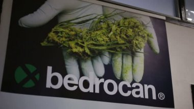 BRNO, CZECH REPUBLIC, NOVEMBER 17, 2016: Billboard poster Dutch company producing cannabis, prescribing standardized cannabis pharmacies, offering standardized medical hemp