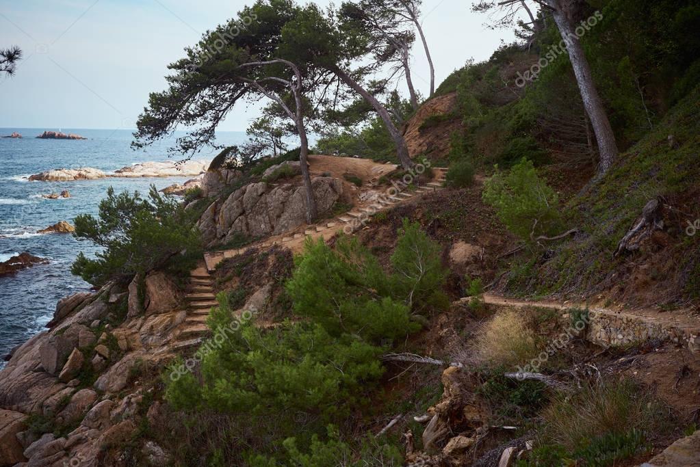 Escape to sea coast in nature