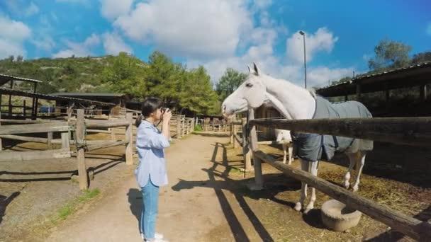 Besuch auf dem Pferdehof