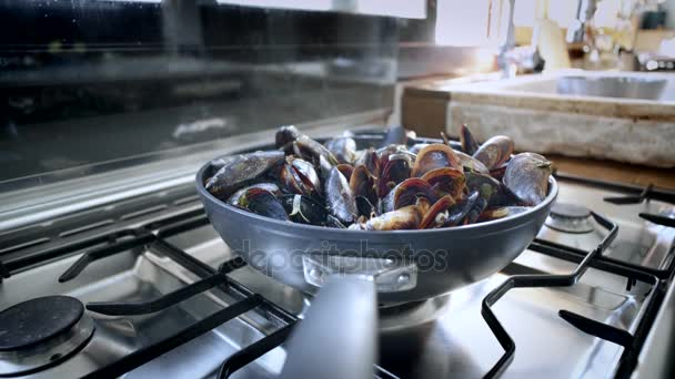 Delicious tasty steaming mussels on pan