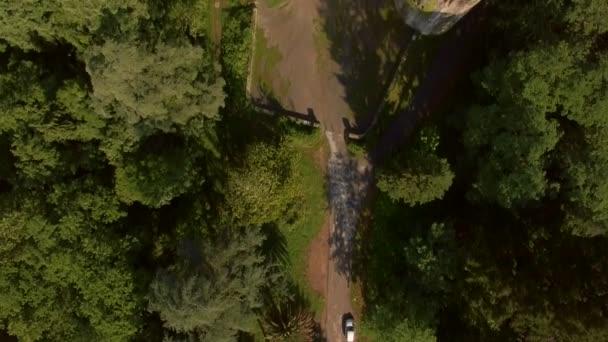 Riprese aeree di Torre medievale nella foresta della Spagna rurale