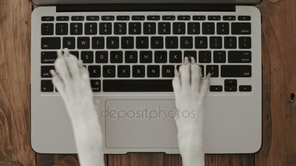 Kutya láb laptop billentyűzet textil