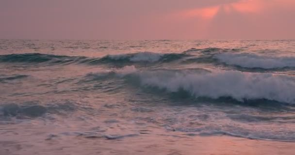 Surfer silhouette swaying on pink waves at sunset