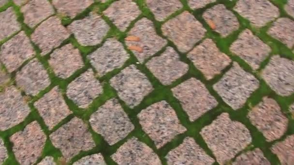 Město chodníku ulice otáčení textury
