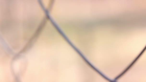 Draht Zaun Extreme Close up — Stockvideo © Gen_Oksi #146087467