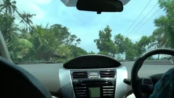 travelling by car fron window view, passing tree crowns with sunbeams, travel concept, asian landscape
